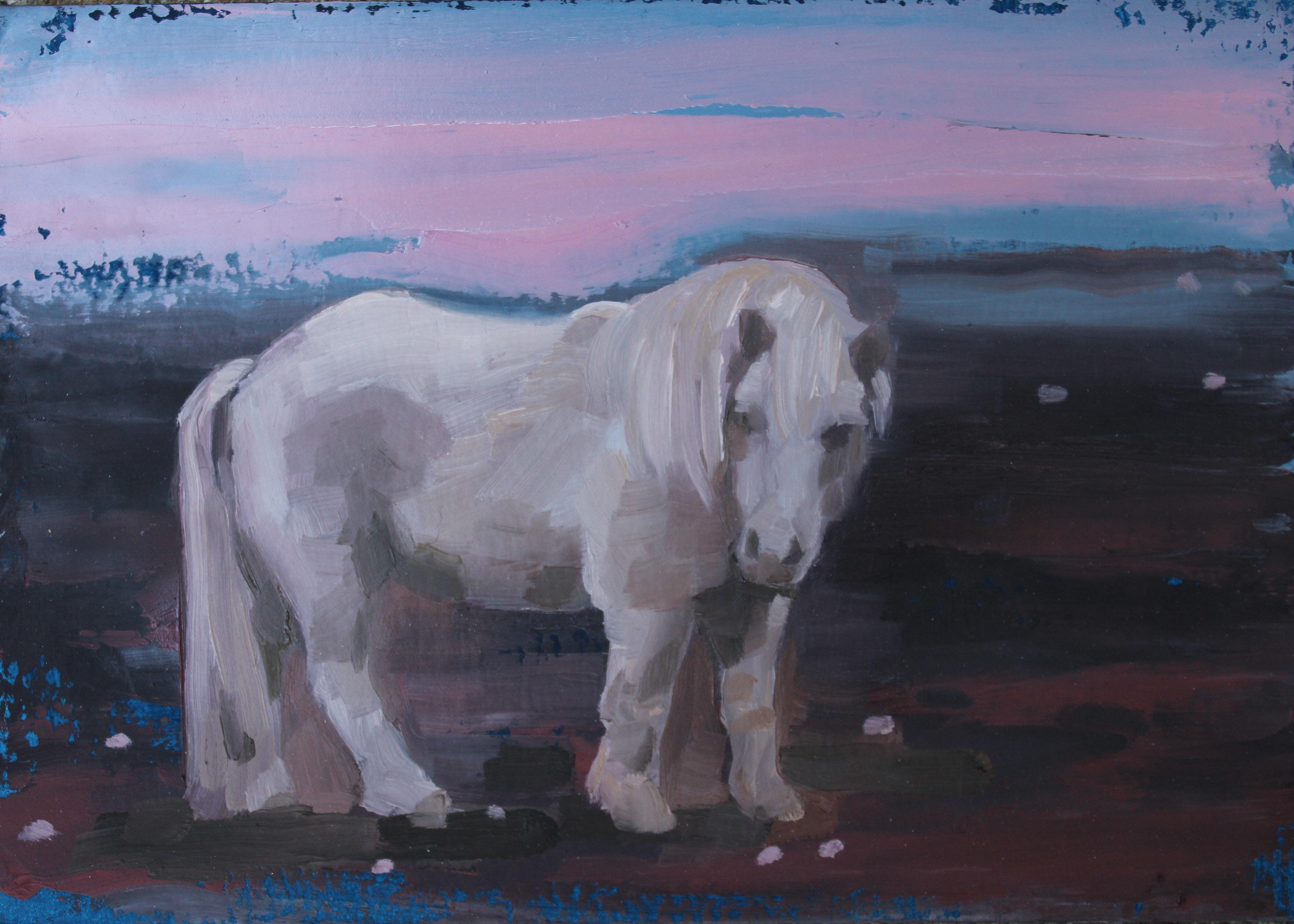 Incognito Pony 2
