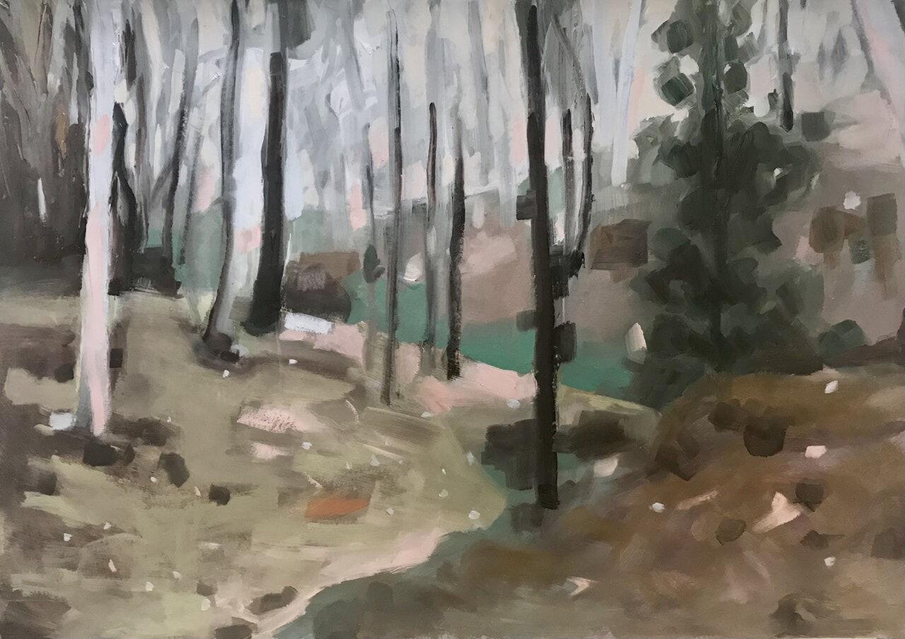 Hill End Study (Bush behind Camp)