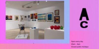 Friends Annual Campbelltown Art Centre
